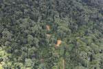 Logging area in Borneo -- sabah_aerial_0834