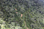 Logging zone in Borneo -- sabah_aerial_0835