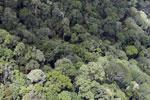 Borneo jungle -- sabah_aerial_0841