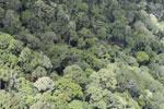 Borneo rain forest -- sabah_aerial_0842