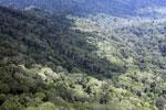 Borneo rain forest -- sabah_aerial_0844