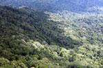 Borneo jungle -- sabah_aerial_0845