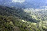 Borneo rain forest -- sabah_aerial_0846