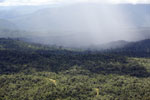 Precipitation over the rainforest