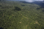 Tropical forest in Borneo -- sabah_aerial_0856