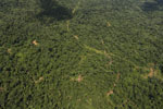 Tropical rain forest in Borneo -- sabah_aerial_0858