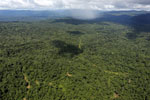 Tropical rainforest in Borneo -- sabah_aerial_0860