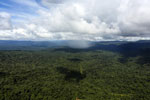 Tropical rain forest in Borneo -- sabah_aerial_0861