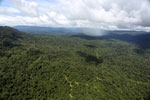Tropical rainforest in Borneo -- sabah_aerial_0863