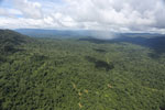 Tropical rain forest in Borneo -- sabah_aerial_0864