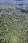 Tropical rainforest in Borneo -- sabah_aerial_0866