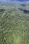 Tropical rain forest in Borneo -- sabah_aerial_0867