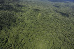 Tropical forest in Borneo -- sabah_aerial_0868