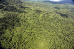 Tropical rainforest in Borneo -- sabah_aerial_0869