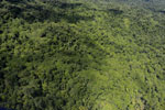Tropical forest in Borneo -- sabah_aerial_0874