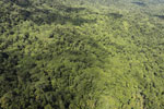 Tropical rainforest in Borneo -- sabah_aerial_0875