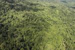Tropical rainforest in Borneo -- sabah_aerial_0875