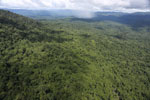 Tropical rain forest in Borneo -- sabah_aerial_0876