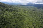 Tropical forest in Borneo -- sabah_aerial_0877