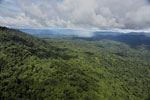 Tropical rainforest in Borneo -- sabah_aerial_0878