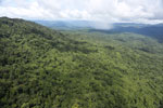 Tropical forest in Borneo -- sabah_aerial_0880