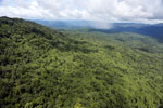 Tropical rainforest in Borneo -- sabah_aerial_0881