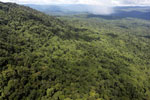 Tropical forest in Borneo -- sabah_aerial_0883