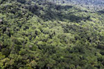 Tropical rainforest in Borneo -- sabah_aerial_0885