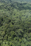 Tropical rain forest in Borneo -- sabah_aerial_0886