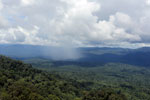 Precipitation over the rainforest -- sabah_aerial_0890