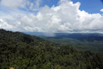 Precipitation over the rainforest -- sabah_aerial_0891