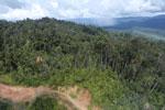 Logging road in Borneo -- sabah_aerial_0893