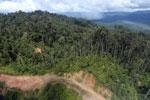 Logging road in Borneo -- sabah_aerial_0894