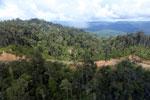 Logging road in Borneo -- sabah_aerial_0899