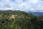 Logging road in Borneo -- sabah_aerial_0901