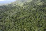 Tropical rainforest in Borneo -- sabah_aerial_0933