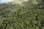 Tropical rain forest in Borneo -- sabah_aerial_0934
