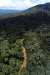 Rainforest river in Borneo -- sabah_aerial_0937