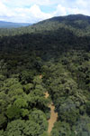 Tropical forest river in Borneo -- sabah_aerial_0939