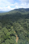 Tropical rain forest in Borneo -- sabah_aerial_0940