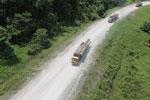 Logging truck in Borneo -- sabah_aerial_0951