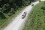 Logging truck in Borneo -- sabah_aerial_0952