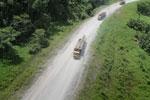 Logging truck in Borneo -- sabah_aerial_0954