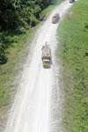 Logging truck in Borneo -- sabah_aerial_0956