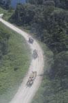 Logging trucks in Borneo