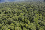 Tropical rain forest in Borneo -- sabah_aerial_0989