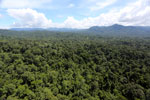 Tropical rain forest in Borneo -- sabah_aerial_1010