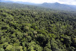 Tropical rainforest in Borneo -- sabah_aerial_1012