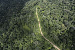Logging road in the rain forest of Borneo -- sabah_aerial_1021