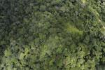 Borneo rainforest -- sabah_aerial_1025
